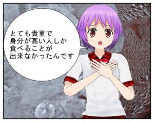 アイスクリーム起源_008
