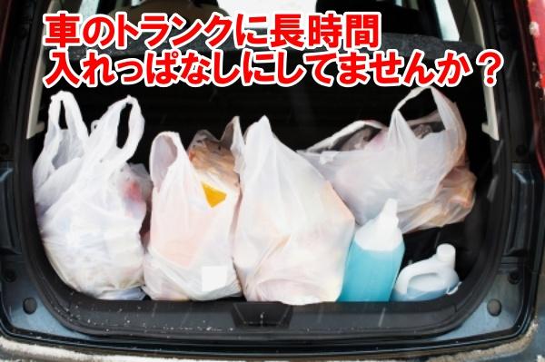 車のトランクに積まれた生鮮食品