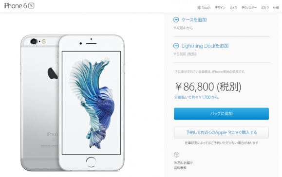 appleストアiphone6s決済画面キャプチャhttp://www.apple.com/jp/shop/buy-iphone/iphone6s/4.7インチのディスプレイ-16gb-シルバー