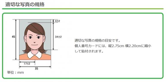 顔写真のサイズ