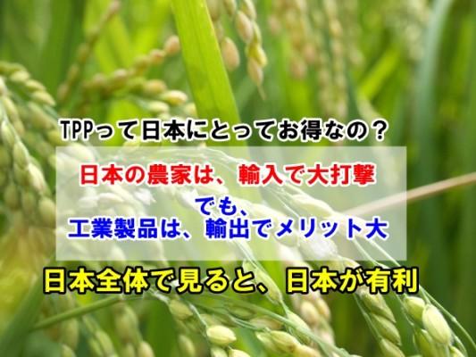 TPP日本のメリットとは