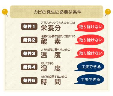 カビが発生する5つの条件