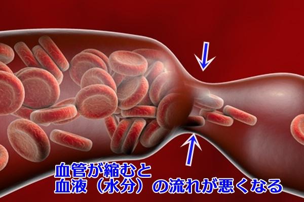 血管の収縮