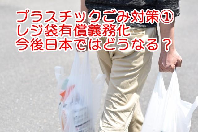 プラスチックごみ対策 レジ袋有料化
